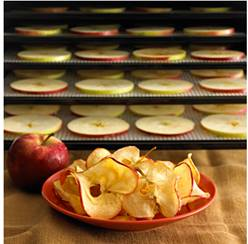 October is National Apple Month – Recipes By Omega Juicers & Excalibur Dehydrators