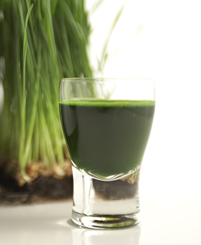 juicer green machine