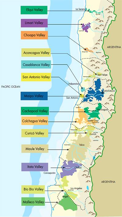 The Chilean Wine Revolution