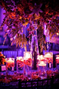 David Tutera Wedding Designs