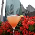Eclipse Cocktail