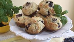 Coast Packing – Tender Citrus Bursting Blueberry Muffins