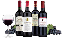 Things You Definitely Need to Learn About St. Julien Bordeaux Wines