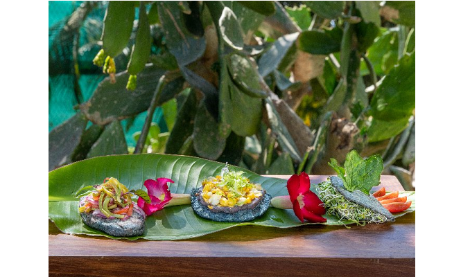 New Healthy Antojitos, Mexican Savory Bites, Cooking Class at Casa Velas in Puerto Vallarta